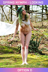 Spring Nymph - Looking Set - Option D